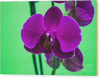 Exposed Orchid Wood Print