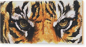 Eye-catching Sumatran Tiger Wood Print by Barbara Keith