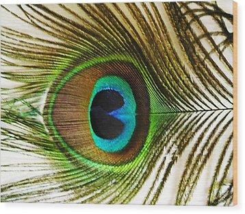 Eye Of Peacock Wood Print