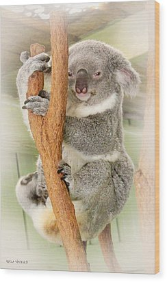 Eye To Eye With Mr. Koala Wood Print by Susan Vineyard