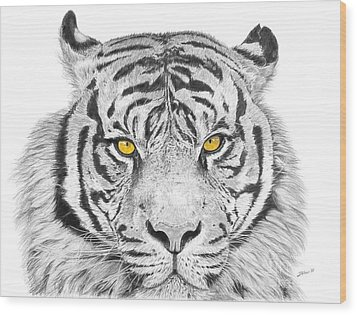 Eyes Of The Tiger Wood Print by Shawn Stallings