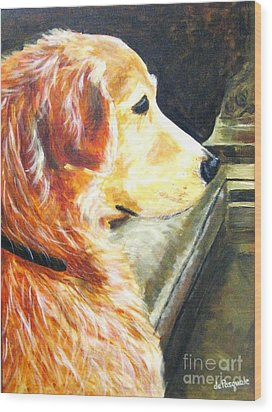 Eyes On Ducks In Fountain Wood Print by Gina DePasquale