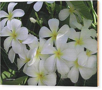 F2 Plumeria Frangipani Flowers Hawaii Wood Print by Donald k Hall