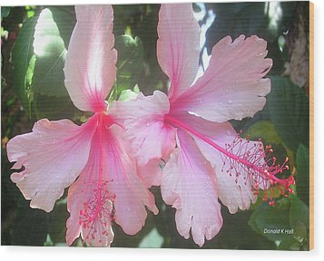 F4 Hibiscus Flowers Hawaii Wood Print by Donald k Hall