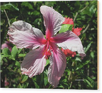F5 Hibiscus Flower Hawaii Wood Print by Donald k Hall