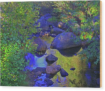 Wood Print featuring the photograph Face In The Creek by Tammy Sutherland