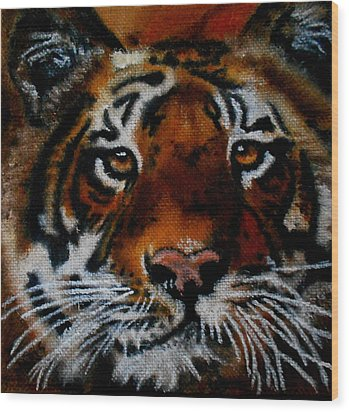 Face Of A Tiger Wood Print