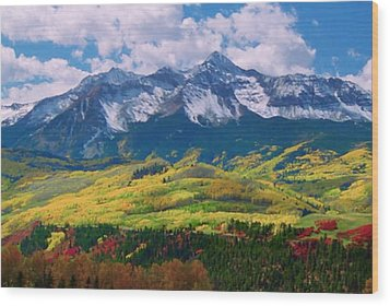 Facinating American Landscape Flowers Greens Snow Mountain Clouded Blue Sky  Wood Print