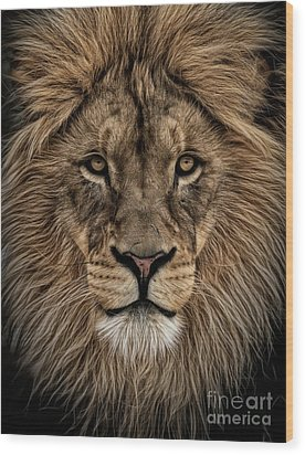 Facing Courage Wood Print by Brad Allen Fine Art