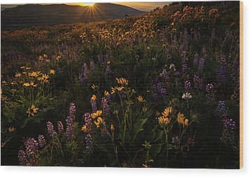 Wood Print featuring the photograph Facing The Day by Mike Lang