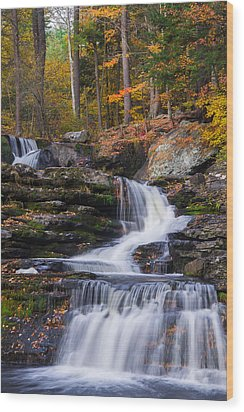 Wood Print featuring the photograph Factory Falls 2 by Mark Papke