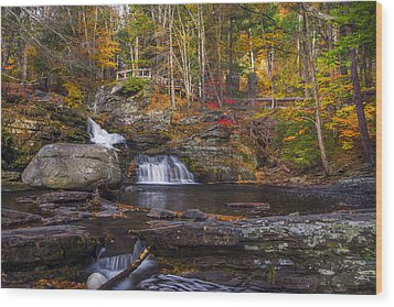Wood Print featuring the photograph Factory Falls by Mark Papke