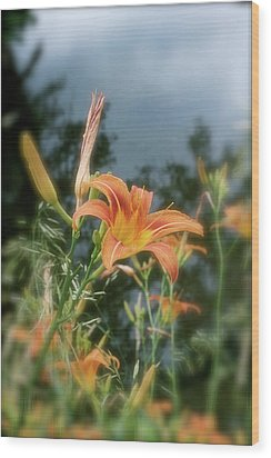 Faded Lily Wood Print