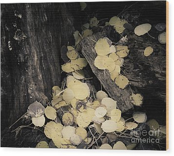 Wood Print featuring the photograph Faded Pot Of Gold by The Forests Edge Photography - Diane Sandoval