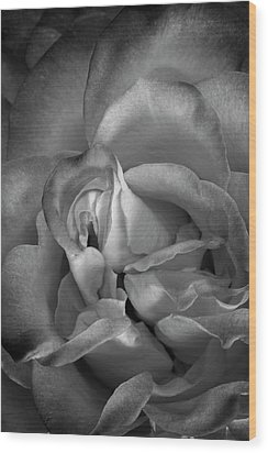 Wood Print featuring the photograph Fading Beauty by Mike Lang
