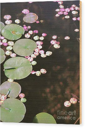Fading Lily Pads Wood Print