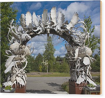 Fairbanks Arch Wood Print by Robert Pilkington