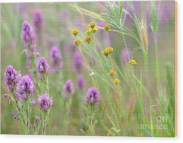 Fairing Of Spring Wood Print