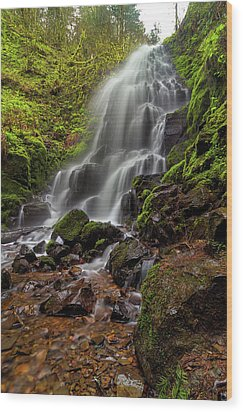 Fairy Falls In Columbia Gorge Wood Print by David Gn