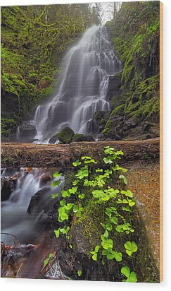Fairy Falls In Spring Wood Print by David Gn