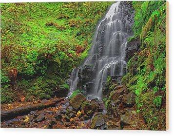 Wood Print featuring the photograph Fairy Falls Oregon by Jonathan Davison