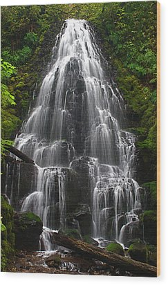 Fairy Falls Wood Print by Todd Kreuter