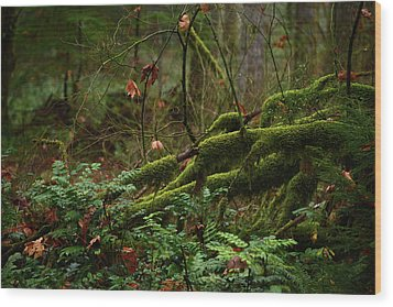 Fairy Forest Wood Print