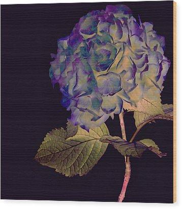Fairy Hydrangea Wood Print by Susan Maxwell Schmidt