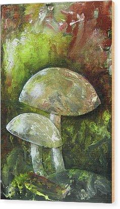 Fairy Kingdom Toadstool Wood Print by Terry Honstead