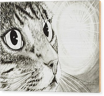 Fairy Light Tabby Cat Drawing Wood Print by Carrie Hawks