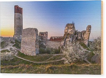 Fairy Tale Castle Remnants Wood Print by Julis Simo