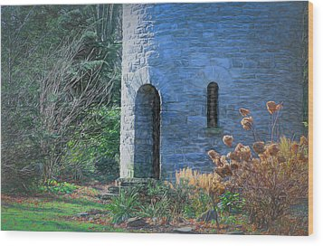 Fairy Tale Tower Wood Print by Patrice Zinck