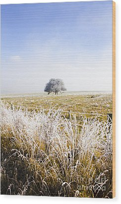 Wood Print featuring the photograph Fairytale Winter In Fingal by Jorgo Photography - Wall Art Gallery