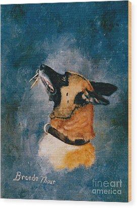 Falco Wood Print by Brenda Thour