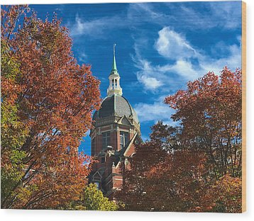 Fall And The Dome Wood Print