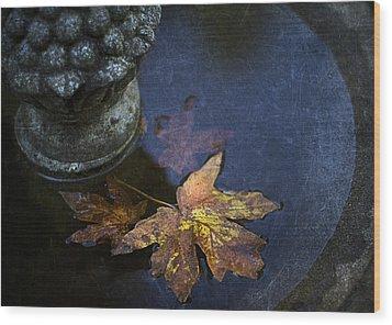 Fall At The Fountain Wood Print