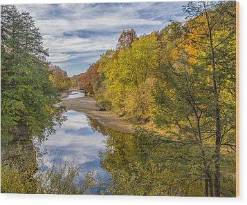 Fall At Turkey Run State Park Wood Print by Alan Toepfer