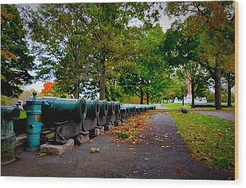 Fall At West Point Wood Print by David Hahn