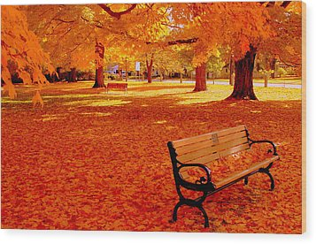 Fall Bench  Newburyport Ma Wood Print by Suzanne DeGeorge