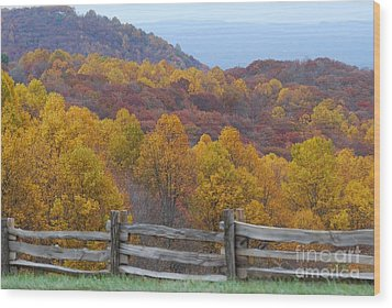 Wood Print featuring the photograph Fall Blend by Eric Liller