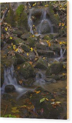 Wood Print featuring the photograph Fall Cascades by Ellen Heaverlo