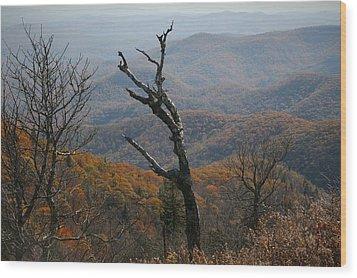 Fall Wood Print by Cathy Harper