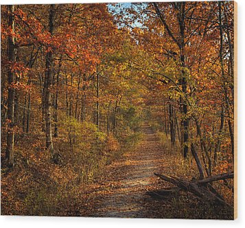 Wood Print featuring the photograph Fall Color At Centerpoint Trailhead by Michael Dougherty