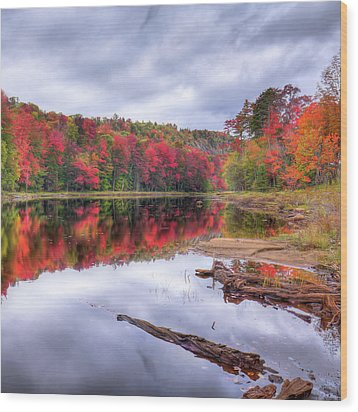 Wood Print featuring the photograph Fall Color At The Pond by David Patterson