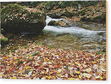 Fall Color Rushing Stream Wood Print by Thomas R Fletcher