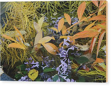 Wood Print featuring the photograph Fall Color Soup by Deborah  Crew-Johnson