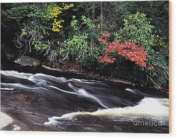 Fall Color Swallow Falls State Park Wood Print by Thomas R Fletcher