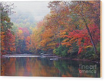 Fall Color Williams River Mirror Image Wood Print