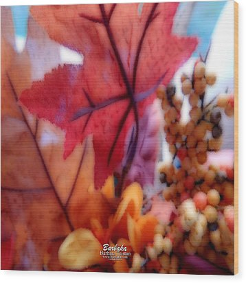 Fall Colors # 6059 Wood Print by Barbara Tristan