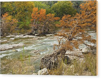 Fall Colors Along The Pedernales River Wood Print by Mark Weaver